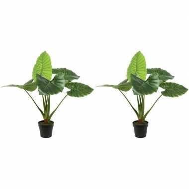 2x groene taro kunstplanten 90 cm met oranje bloemen en zwarte pot