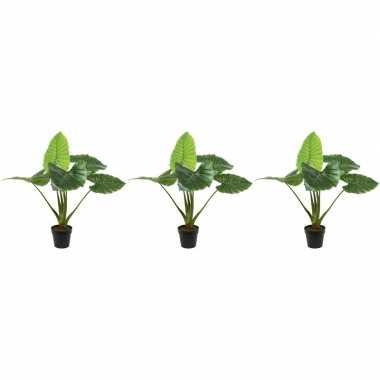 3x groene taro kunstplanten 90 cm met oranje bloemen en zwarte pot