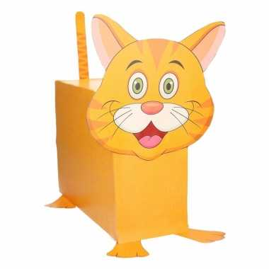 Oranje kat/poes suprise knutselen diy pakket