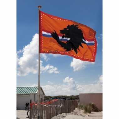 Reuze oranje vlag 2 bij 3 meter