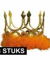 6x gouden kronen met oranje veren