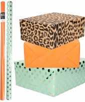 6x rollen kraft inpakpapier folie pakket panterprint oranje mintgroen zilver stippen 200 x 70 cm