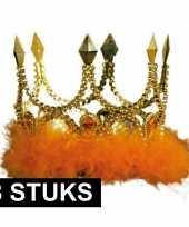 8x gouden kronen met oranje veren