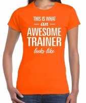 Awesome trainer kado t-shirt oranje voor dames